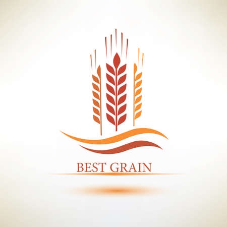 grain fields: grain vector symbol