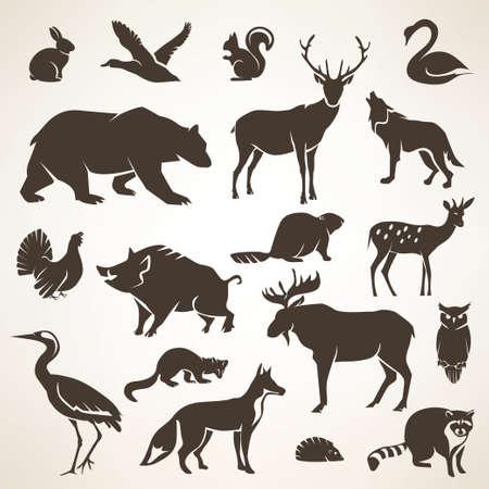 állatok: európai erdei vadak gyűjteménye stilizált vektor sziluettek Illusztráció