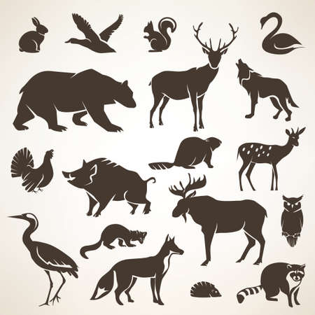 animal fauna: european forrest wild animals collection of stylized vector silhouettes