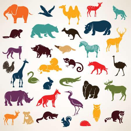 animais: conjunto grande de animais africanos e europeus silhuetas em estilo cartoon Ilustração