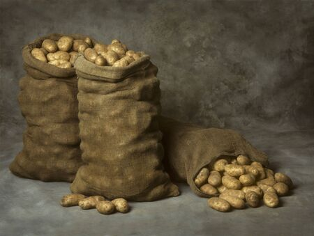 sackcloth: Three Burlap Sacks of Potatoes Stock Photo