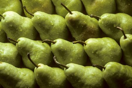 pomme: Bartlet pears lined up sprinkled with water