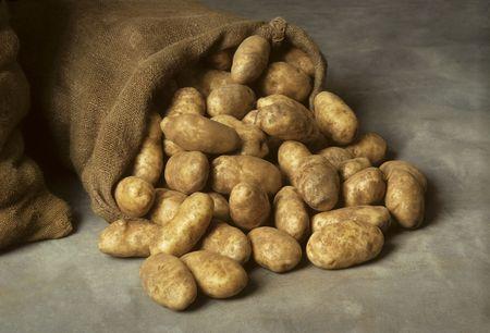 Spilled burlap sack of potatoes