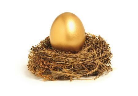 Golden egg in a nest representing retirement savings or security