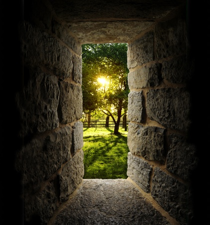 Sunrise through trees as viewed out of a castle-like stone window or passage. Vertical.