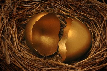 equidad: Un huevo de oro agrietado nido. Podr�a simbolizar amenaza financiera amenazada o desastres.