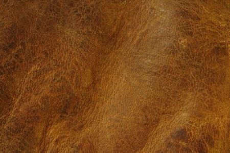 texture cuir marron: Arri�re-plan de texture en d�tresse en cuir brun Banque d'images