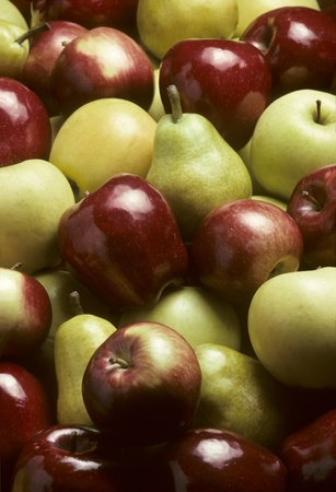 Pile of mixed pommefruit including a variety of apples and Bartlet pears photo