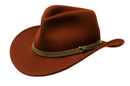 brim: Reddish brown Adirondack hat with wide felt brim, isolated against white