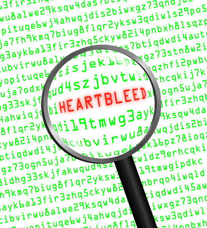 The word Heartbleed revealed in computer machine code through a magnifying glass  photo