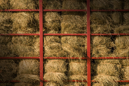 Hay bales piled within a cart with red metal bars lit diagonally