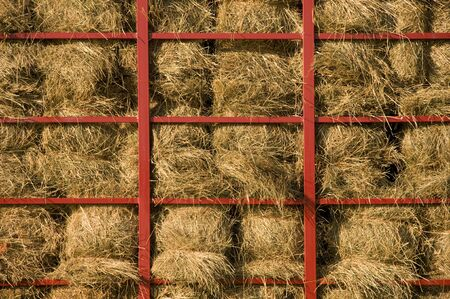 metal bars: Hay bales piled within a cart with red metal bars