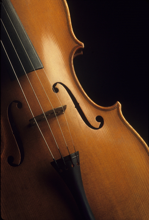 Close-up of a wooden violin Reklamní fotografie