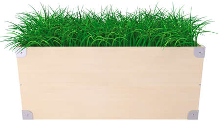 Box with green fresh grass isolaten on white background Stock Photo - 15833457