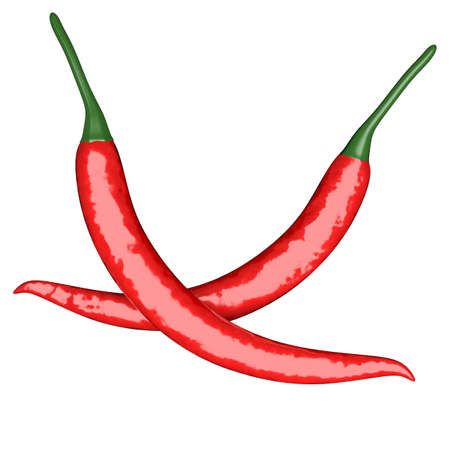 Two red hot chili pepper isolated at white photo
