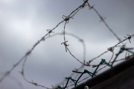 Barbed wire on fence. Photo photo