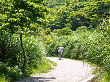 A man walking in the country road at noon