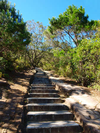 Steps on hiking trail