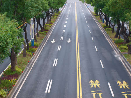 Road and trees in Taipei City, Taiwan