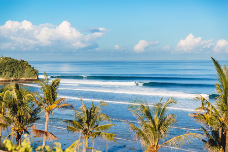 Blue crashing wave in the ocean and coconut palms on a beach. Crystal wave in Bali