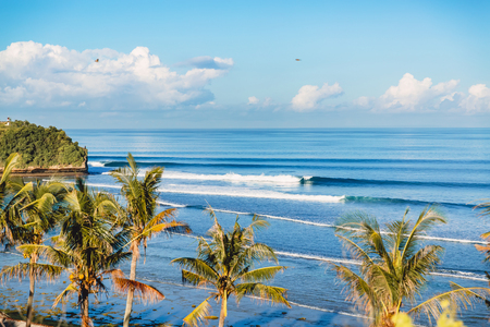 Blue crashing waves in the ocean and coconut palms on a cost. Crystal waves in Bali
