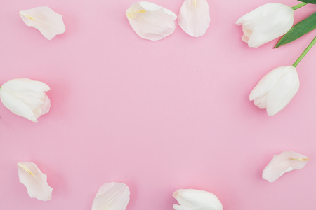 Floral background with white tulips flowers on a pink pastel stock floral background with white tulips flowers on a pink pastel background flat lay top mightylinksfo