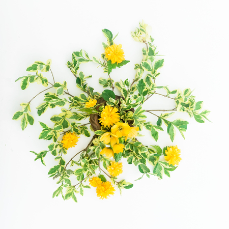 Yellow flowers and branches on white background. Flat lay, Top view. Floral spring background