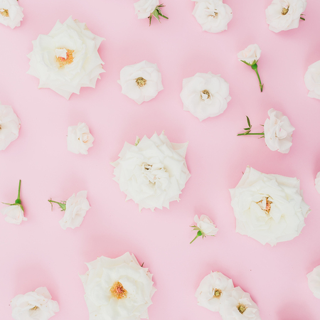 Floral composition with white roses on pink background. Flat lay, top view. Pastel background.