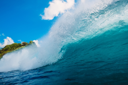 Blue wave in ocean. Breaking barrel wave in Bali
