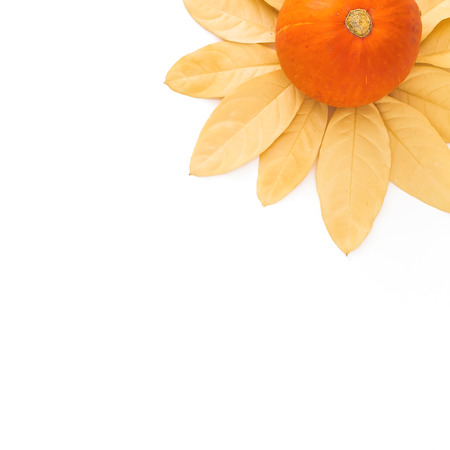 Thanksgiving autumn background with fall leaves and orange pumpkin on white background. Flat lay, top view