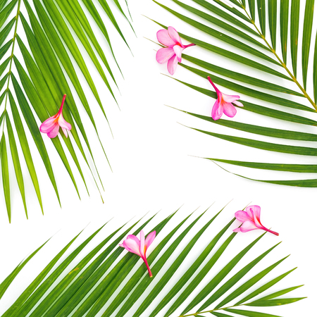Composition of palm leaves with tropical pink flowers on white background. Flat lay, top view.