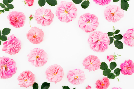 Floral frame of pastel pink roses and petals on white background. Flat lay, top view. Flower pattern of pink flowers