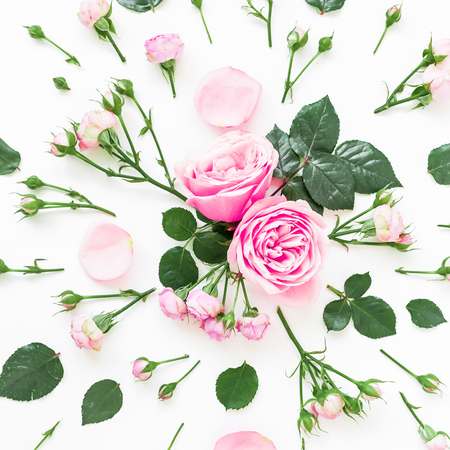 Floral composition with roses, leaves and buds on white background. Flat lay, top view. Flower background