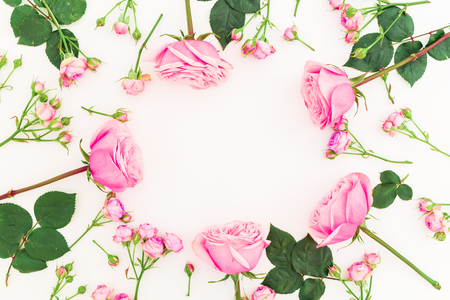 Frame with roses and buds on white background. Flat lay, top view. Pastel flowers Stock Photo