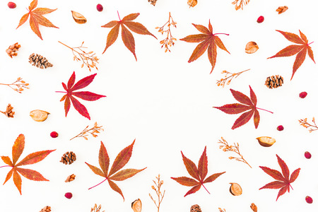 Round frame with autumn leaves and dried flowers on white background. Flat lay, top view. Autumn composition