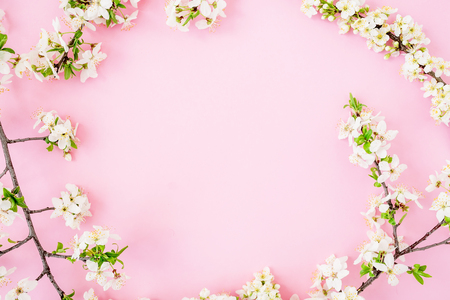 Floral frame with white flowers isolated on pink background. Flat lay, top view. Spring time background.