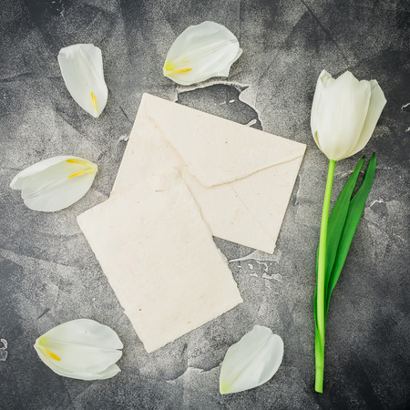 Floral pattern with white tulip Flat lay, top view Stock Photo