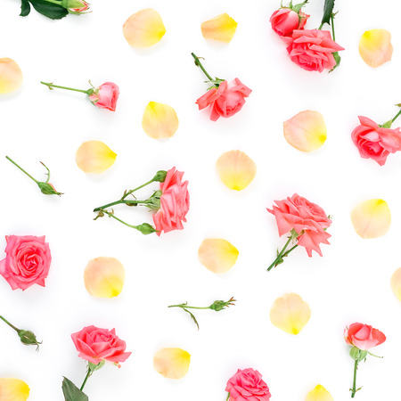 Rose petals on white background. Flat lay, top view. Stock Photo