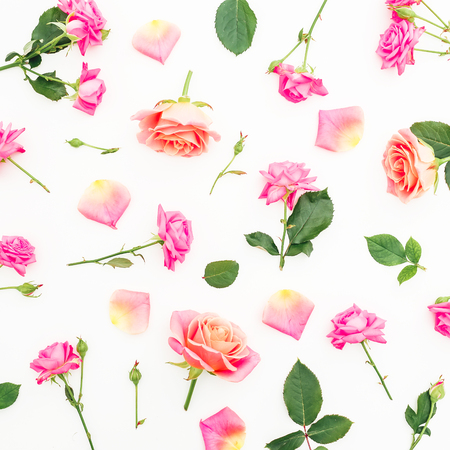 Pattern with pink roses and petals on white background. Flat lay, top view. Stock Photo