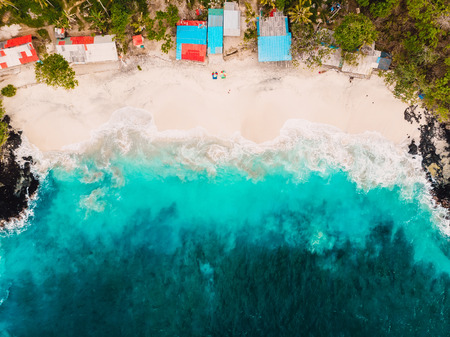 Tropical white sand beach with coconut palms and turquoise ocean. Aerial view