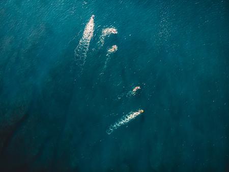 Surfers in blue ocean waiting wave. Aerial view with drone Stock Photo