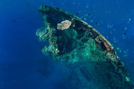 Freediver man dive in shipwreck, underwater Stock Photo