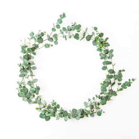 Floral round frame with eucalyptus leaves isolated on white background. Flat lay, top view