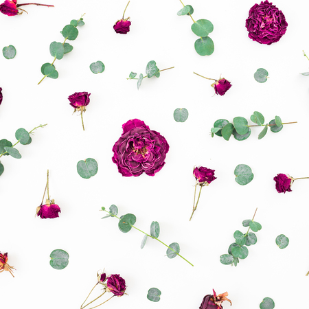 Floral pattern of flowers and eucalyptus branches on white background. Flat lay, top view.