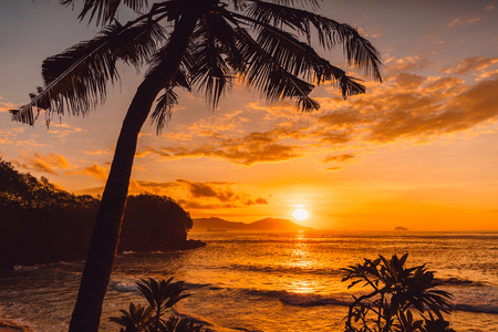 Coconut palms and sunrise at tropical beach with sea