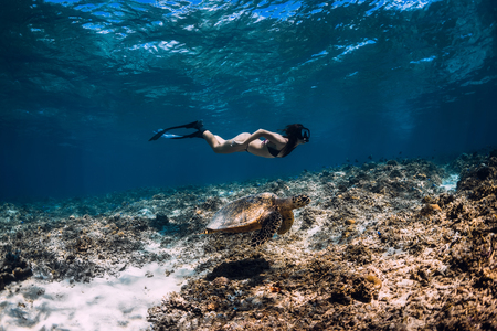 Young woman freediver glides underwater with sea turtle. 写真素材