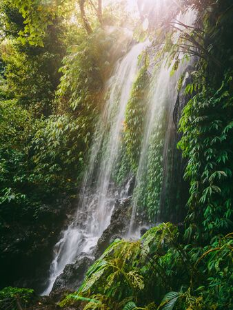 Waterfall with sunshine in Bali. Tropical forest and waterfall 写真素材