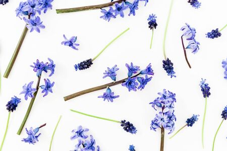 Floral pattern with blue or pink flowers and petals on white