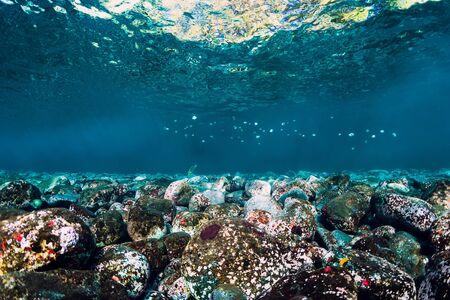 Underwater scene with stones, copy space.