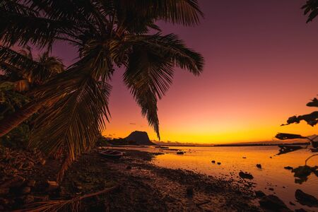Fishing boat and coconut palm at sunset time. Le Morn mountain on background in Mauritius. Stok Fotoğraf